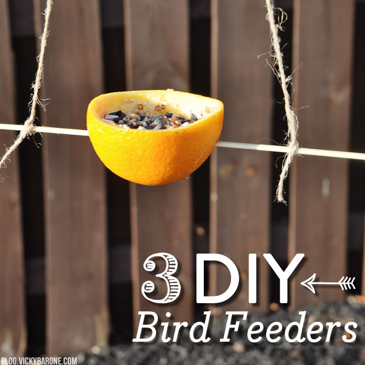3 DIY Bird Feeders
