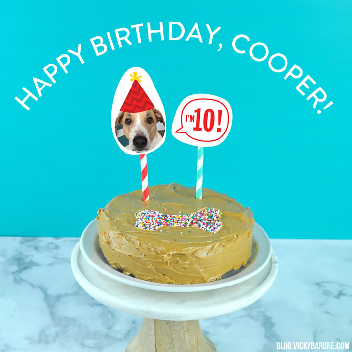 Happy 10th Birthday, Cooper!